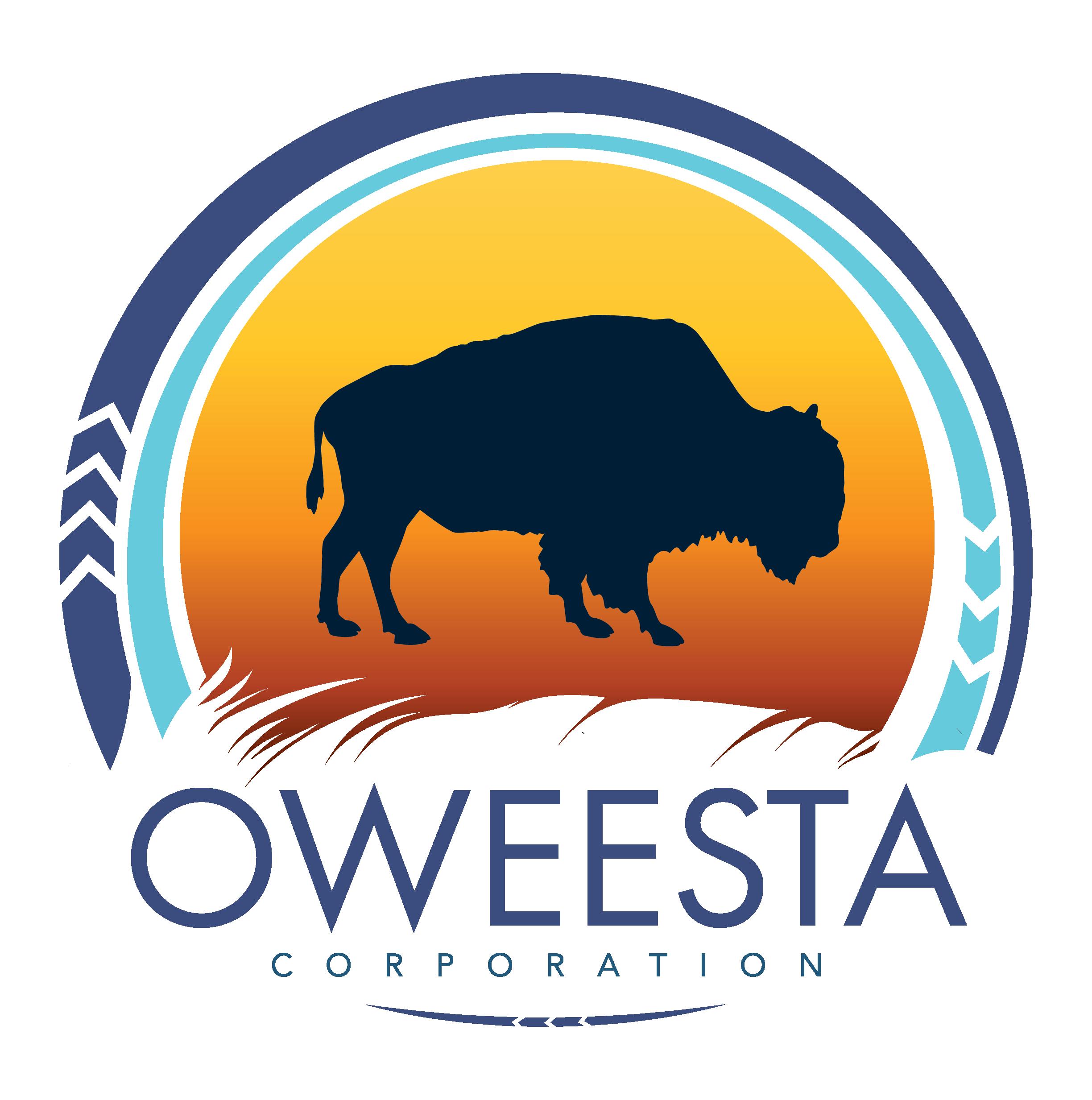 Oweesta - Logo